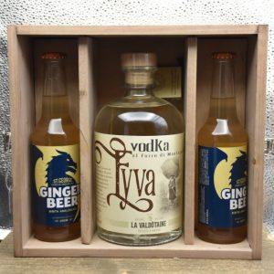 Vodka e ginger beer